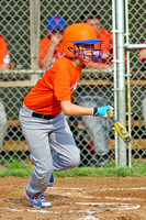 Logansport Youth Baseball (Logan Savings) Mets 2014