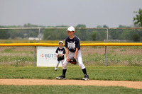 (RYBL) Baseball- Rookie League, Herbst 2013