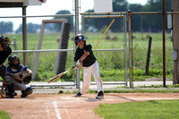 Lewis Cass Youth Baseball 11-12 (A's & Yankees) 2013