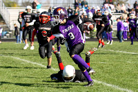 Northwestern Youth Football 2011