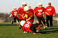 Alexandria Youth Football 2010