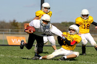 Alexandria Youth Football 2011
