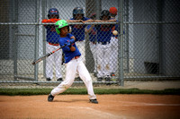 NW Youth Baseball Minors(Kokomo Grain) 2012