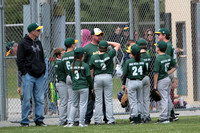 2017 Bunker Hill Youth Baseball (A's)
